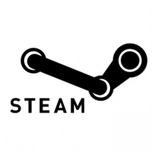 partner-steam-w.png